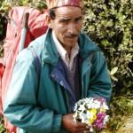A Bouquet of Flowers from the Beautiful Khandedhar Medow, Jiwa Nal (4,020 m)