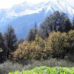 GHNP Khorli Poi-Tirithan view