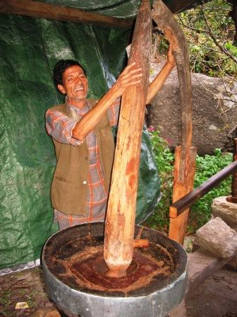 A traditional oil expeller  in GHNP ecozone (Tirthan Valley).