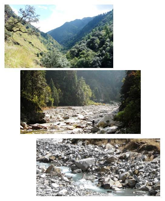Biological diversity is the most Outstanding Unique Value of the Great Himalayan National Park.