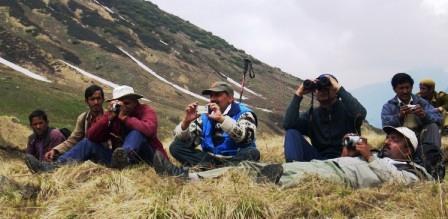 Wildlife observations near Tirath, origin of Tirthan river