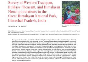 Survey of Western Tragopan J.Miller