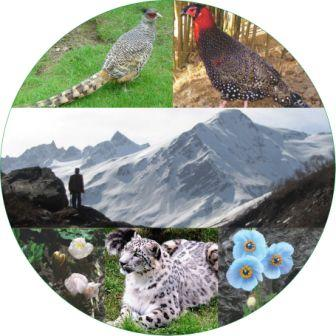 GHNP mountains, plants and animals