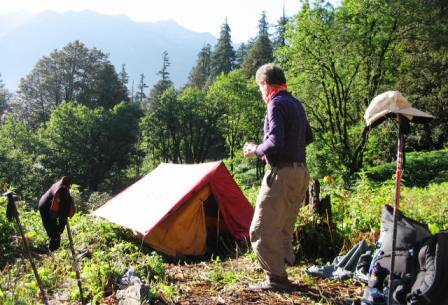Designated Camping Sites are available in the Park (Nada Meadow in Tirthan Valley In this pic)