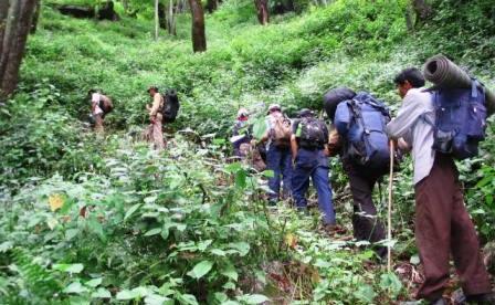 A trek in progress through the Tirthan Valley.
