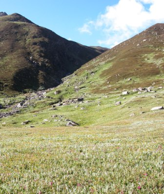 Khandedhar Meadow (3800m alt) in JiwaNal Valley