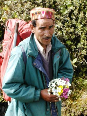 S1.P1 A Bouquet of Flowers from the Beautiful Khandedhar Medow, Jiwa Nal (4,020 m)